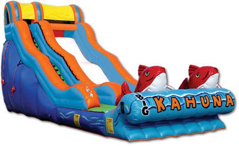 20' - Big Kahuna wet/dry slide - 36' x 17'